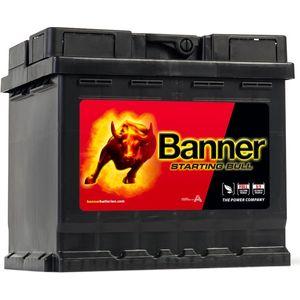 012 Banner Starting Bull Car Battery (54559)