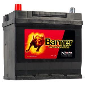 049 Banner Starting Bull Car Battery (54579)