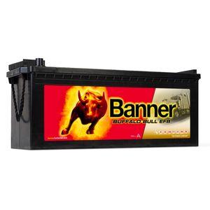 Banner Buffalo Bull EFB Commercial Battery 74017 12V 240Ah Type 625