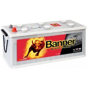 Banner Buffalo Bull Commercial Battery 68089 12V 180Ah Type 623
