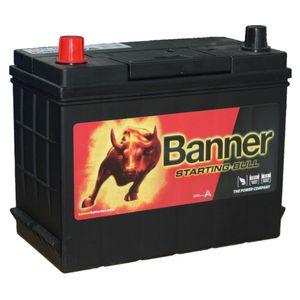 038 Banner Starting Bull Car Battery (53880)