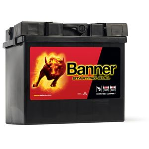 53030 Banner Starting Bull Car Battery 12V 30Ah