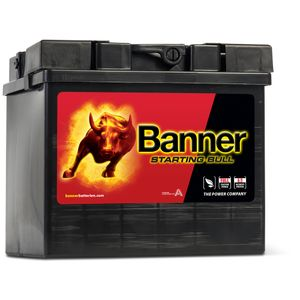 53034 Banner Caterham Car Battery 12V 30Ah