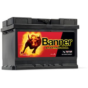 065 Banner Starting Bull Car Battery (55519)