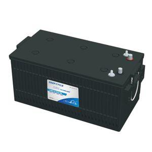 Leoch Superior Lead Carbon AGM 262Ah Battery LDC12-250-8D