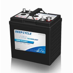 Leoch Superior Lead Carbon AGM 6V 231Ah Battery LDC6-210-GC2