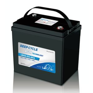 Leoch Superior Lead Carbon AGM 6V 246Ah Battery LDC6-224-GC2