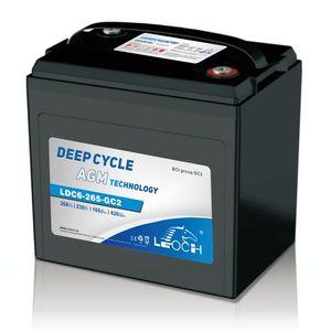 Leoch Superior Lead Carbon AGM 6V 285Ah Battery LDC6-265-GC2