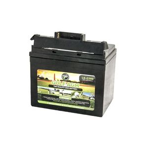 Leoch LG-C280 Tbar AGM Golf Battery 12V 38Ah