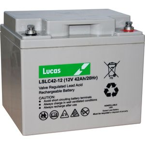 LSLC42-12 Sealed Lead Acid VRLA Battery 12V 42Ah FNC12420