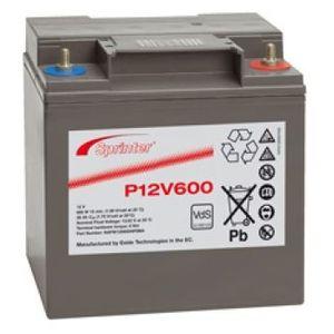 P12V600 Sprinter P Network Battery