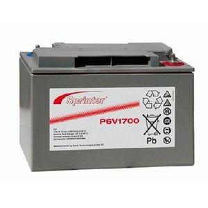 P6V1700 Sprinter P Network Battery