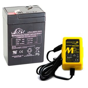 Toy Car Battery and Charger Combo 6V 4AH