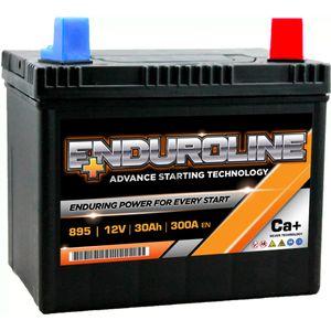 895 Enduroline Lawnmower Battery 12V