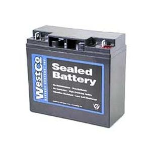 Westco F19-12B Lawnmower Battery 12V (12V20P)