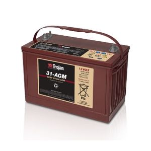 Trojan Battery 31-AGM 100Ah Deep Cycle Battery